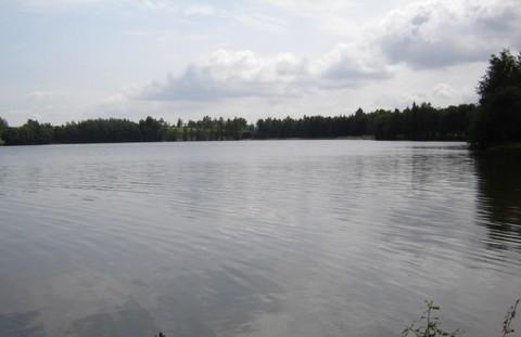 FOTKA - rybník.,