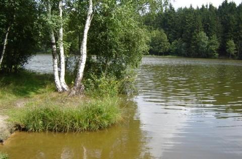 FOTKA - rybník,,,