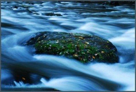 FOTKA - voda divoká