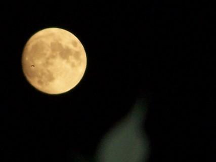 FOTKA - Měsíc v úplňku