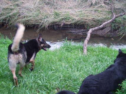 FOTKA - Deny a Maxík u potoka