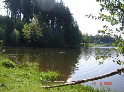 FOTKA - Domanínský rybník....