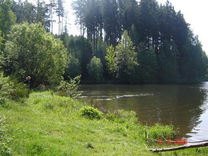 FOTKA - Domanínský rybník......