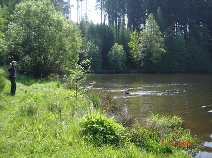 FOTKA - Domanínský rybník.......