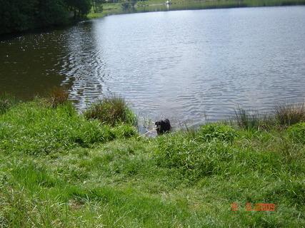 FOTKA - Domanínský rybník........