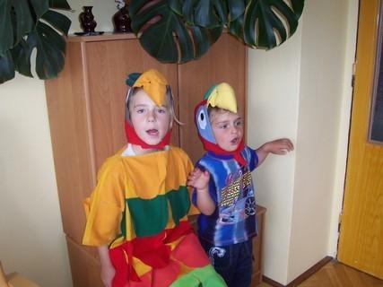 FOTKA - Moji papoušci
