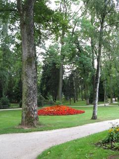 FOTKA - cestička v parku
