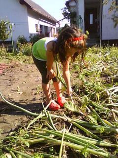 FOTKA - práce na zahradě