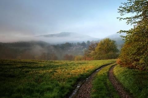 FOTKA - Jarní ráno