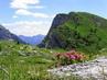 Idylka v Karnských Alpách