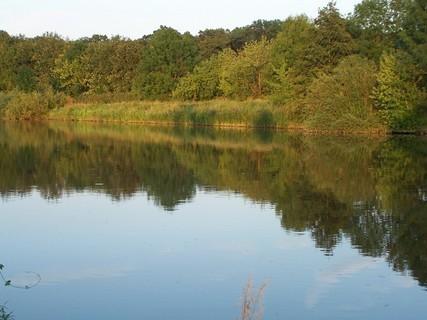 FOTKA - U řeky-