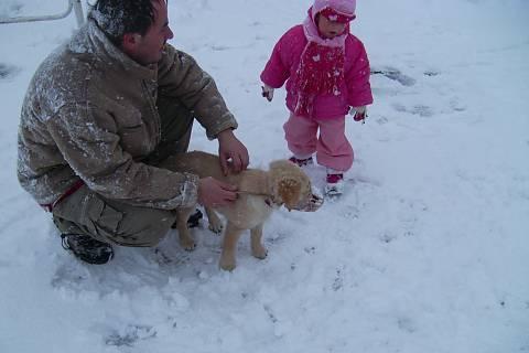 FOTKA - sněží