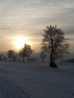 FOTKA - Zimní západ