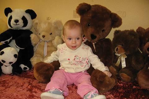 FOTKA - Království medvídků