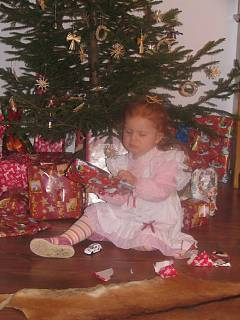 FOTKA - Vánoční veselí