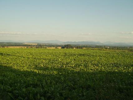 FOTKA - Krajinka s výhledem na Beskydy