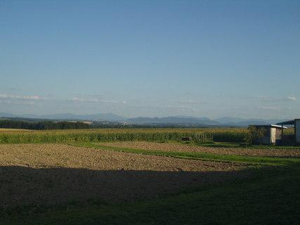FOTKA - Krajina v létě