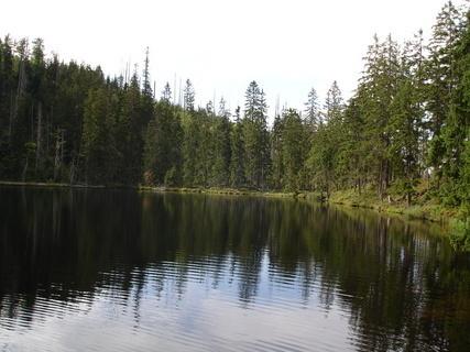 FOTKA - Šumava - Prášilské jezero (2)