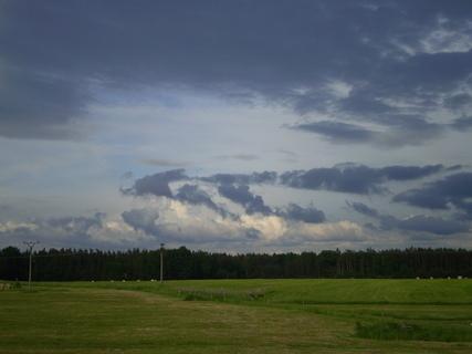 FOTKA - Příroda za domem
