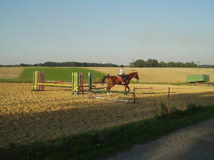 FOTKA - Drezúra koně