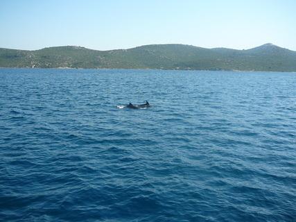 FOTKA - Chorvatsko 29