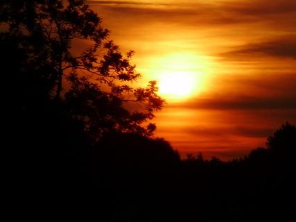 FOTKA - Zapadající sluníčko--.
