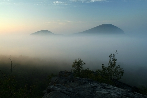 FOTKA - mlha pod Kaňkovem