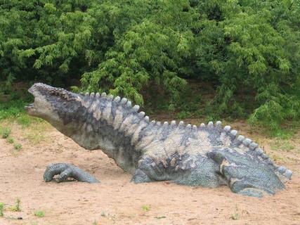 FOTKA - dinopar1