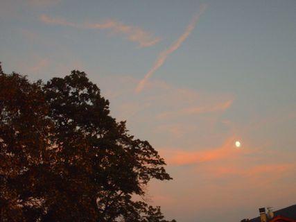 FOTKA - 31.8.2009 ve 20 hod - výhled na jíhovýchod a na měsic o západu slunce.