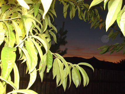 FOTKA - Výhled ze záhrady  na Ještěd a západ slunce- 31.8.2009.