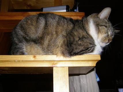 FOTKA -  odpočívám na schodech