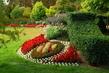 koutek v královské zahradě