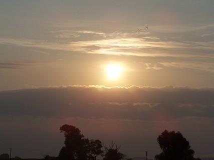 FOTKA - Dobré ráno