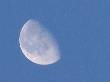 FOTKA - měsíc na ranní obloze