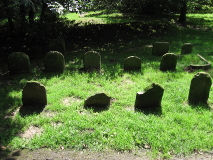 FOTKA - Clyne garden - psí hřbitov