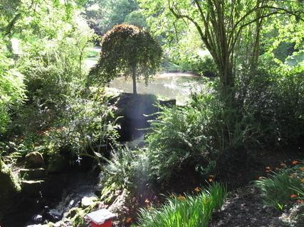 FOTKA - Clyne garden - vodopádek