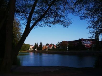FOTKA - večerní