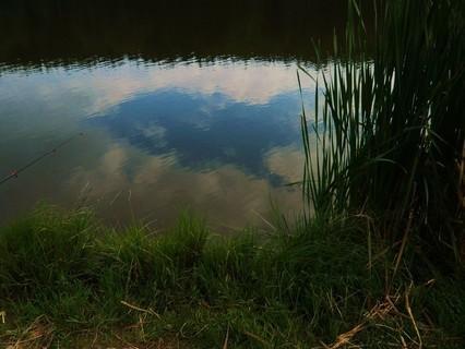 FOTKA - večer u rybníka