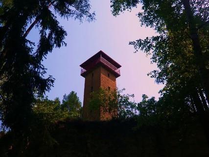 FOTKA - rozhledna v lese