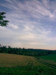FOTKA - Krajinka kolem lesů