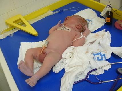 FOTKA - 5 minut po narození
