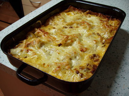 FOTKA - lasagne **
