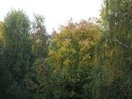 FOTKA - Pohled z bytu