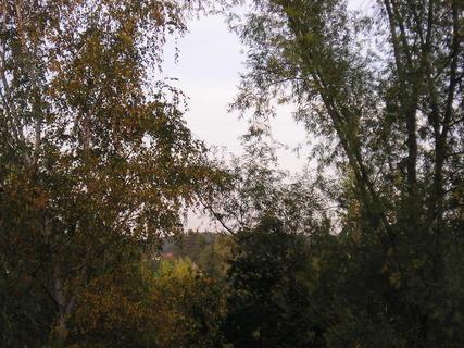 FOTKA - Pohled z bytu1