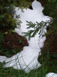 FOTKA - Sněhový duch