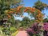 Resort Pai