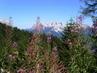 Vzpomínka na Dolomity