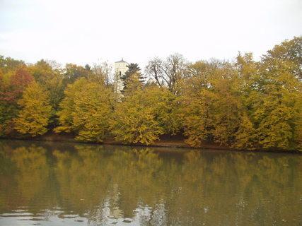 FOTKA - Rybník, stromy