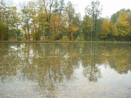 FOTKA - Barevná podzimní příroda