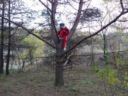 FOTKA - dcera leze pořád po stromech